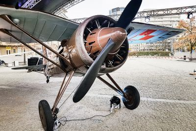 Come fly with me: Fascinating exhibition shows off some of